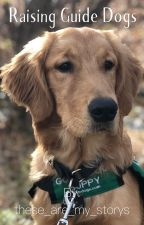 Raising Guide Dogs  by these_are_my_storys