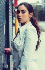 When Y/N Met Lauren •Lauren Jauregui Conversion Fic• by LJCrave
