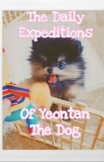 The Daily Expeditions of Yeontan The Dog