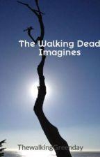 The Walking Dead Imagines by BloodSeeker11