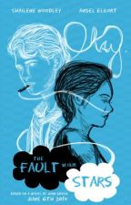The Fault In Our Stars Epilogue by lilmonkey13