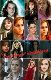 the diary of a mudblood  a harry potter fanfic by chickdramoine