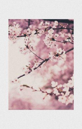 El chico del cerezo de sakura |One-Shot| by NozomiKuro