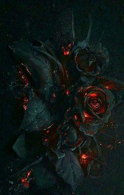 Hoa Trong Bóng Đêm
