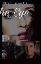 What Meets the Eye // A Castle Fanfic  by _bernards_