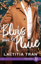 Mat et Mateo : Blois Sous La Pluie by JessicaNaide