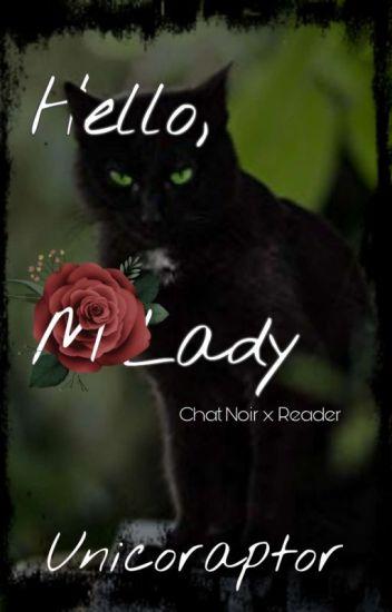 Hello, M'Lady ♡~♡ Chat Noir x Reader