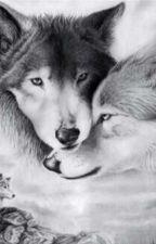My wolf by Laseliea