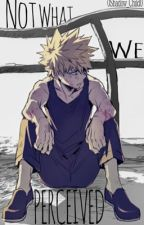 Not What We Perceived (Bakugo x Soulmate!Reader) [ON HIATUS] by 0Shadow_Child0