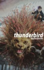 fantastic beasts gif series; thunderbird  by starlordesses