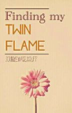 Finding my Twin Flame  by ScribbleSaysNo