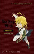 The Boy with Golden Hair and Emerald eyes (Meliodas x reader) (nnt/tsds) by Alydeli1016