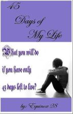 45 Days of My Life by equinox28
