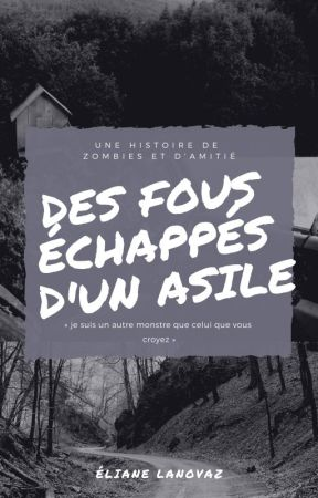Des Fous échappés d'un asile by LilyLanovaz