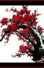 Hua Hua Shijie by Psycho_12