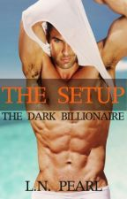 The Setup - The Dark Billionaire 1 by LNPearl