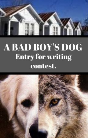 The Bad Boy's Dog. (Entry for contest!) by Cupcakes20040