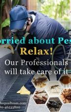 Pest Control Services by Anuragsamal