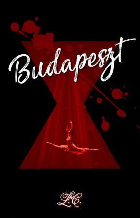 Budapeszt by LycorisCaldwelli
