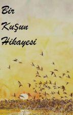 Bir Kuşun Hikayesi by SelimGolgesiz