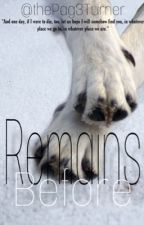 Remains Before by thePag3Turner