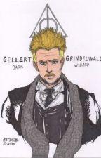 Gellert Grindelwald x Newt Scamander!! by p0tat0turtl3