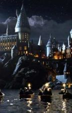 Maci's Crazy Year at Hogwarts (one direction fanfic) by SummerComeBack123