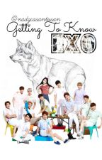 Getting To Know EXO (Completed) by nadzcasantusan