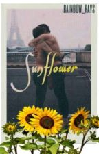 Sunflower || Larry Stylinson AU by rainbow_rays