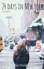 24 days in New York by Lillaea