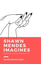 Shawn Mendes Blurbs and Short Stories by Tobiastattoos