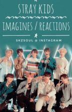 Stray Kids imagines/ reactions by taedreaming1230