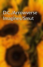 D.C./Arrowverse Imagines/Smut by Flashwells