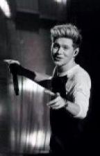 La Caida de Horan (Niall y tu) -HOT- TERMINADA by ExtraordinHxxrry