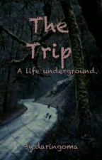 The Trip √ by daringoma