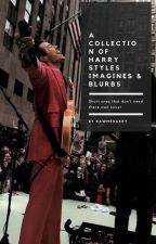 A Collection Of Harry Styles Imagines & Blurbs by Rawmeharry