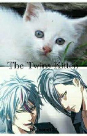 The Twins Kitten by Zoomj123