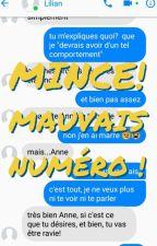 Mince! Mauvais numéro ! TOME 1 (TERMINÉ) by Elea268