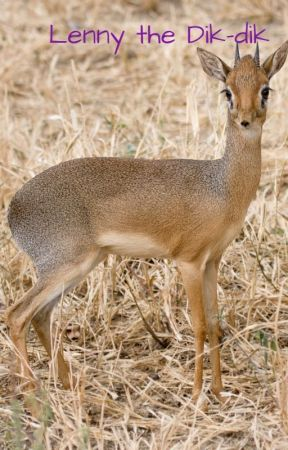 Lenny the dik-dik by SunsetMoonrise21