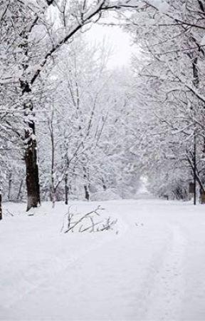 Snowflakes  by Kageyama_Toblerone