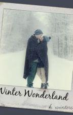 Winter Wonderland by kthrnwinters