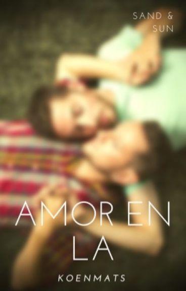 Ian & Evan Amor en LA (gay)