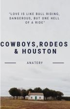 Cowboys, Rodeos, and Houston by anatery