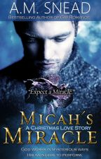 Micah's Miracle: A Christmas Love Story by AMS1971