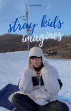 Stray Kids x Reader Imagines by verasmion