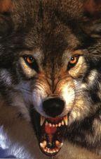 Wolfsbane by sadsunfl0wer