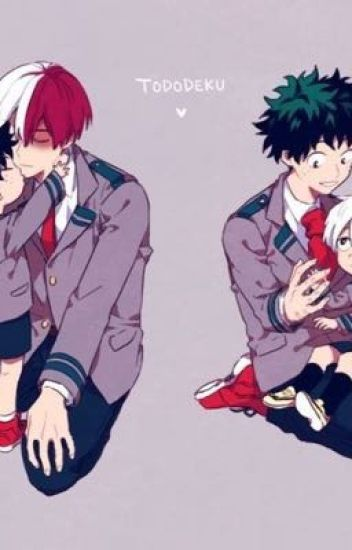 Tododeku Picture Book~ [Bnha]
