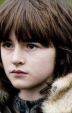 Ours Is The Fury. Hear me roar. (Bran Stark) by DivergentFourTris13