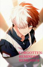 【Forgotten. Reminded. Remember. 】Todoroki Shouto x Reader by NioXUntitled