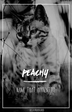 peachy // name that apprentice 2 by -aceisforeverloved